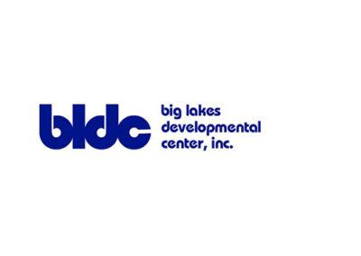 CDDO Assessment Coordinator